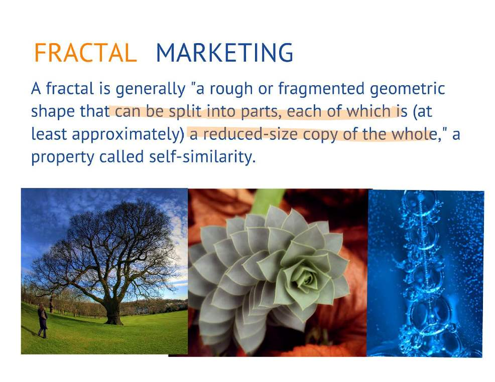 fractal-marketing